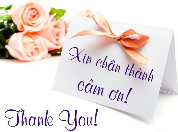 cảm ơn hay cám ơn, cảm ơn, cám ơn, tiếng Việt, sự phong phú của tiếng Việt
